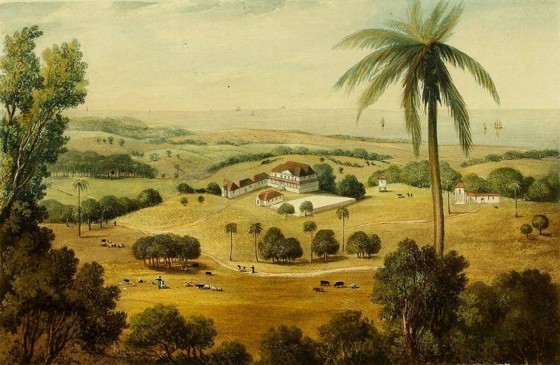 Cardiff Hall, Jamaica, between 1820 and 1824, by James Hakewill