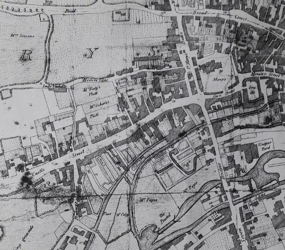 Charles Tomkins' map of Reading (cropped) from Coates, C. The history and antiquities of Reading, 1802