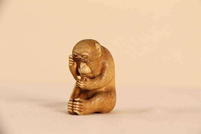 An ivory netsuke monkey, holding spectacles up to its face.