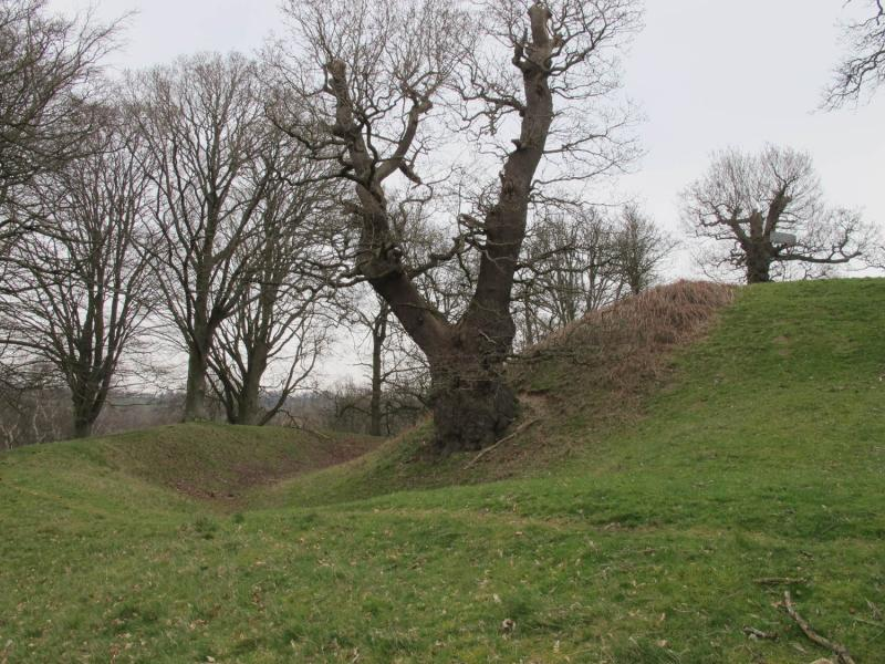 Castle Motte at Hamstead Marshall Park  © Copyright Michael Hand (CC BY-SA 2.0)