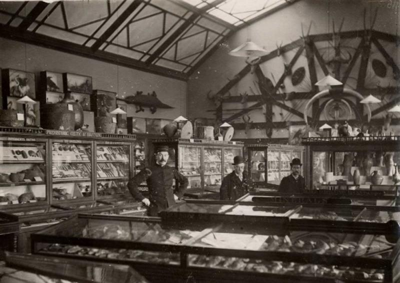 Reading Museum in 1903
