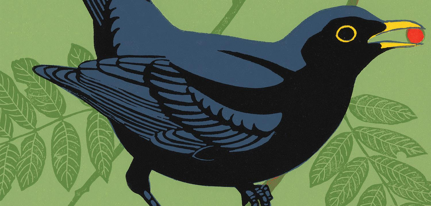 A cover image for our blog, featuring an illustration by Two Rivers Press.