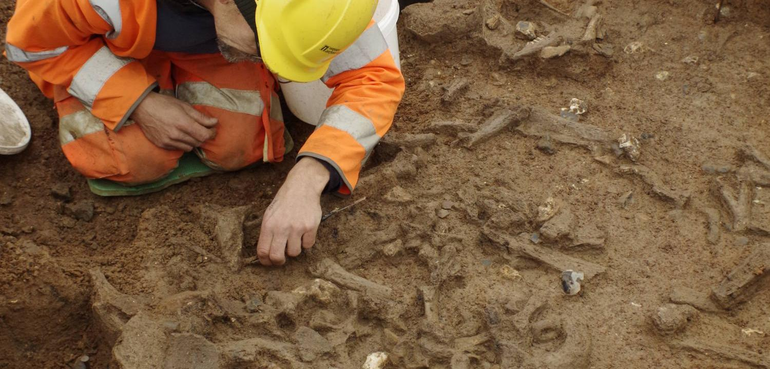 excavating pot and bone debris at the causewayed enclosure