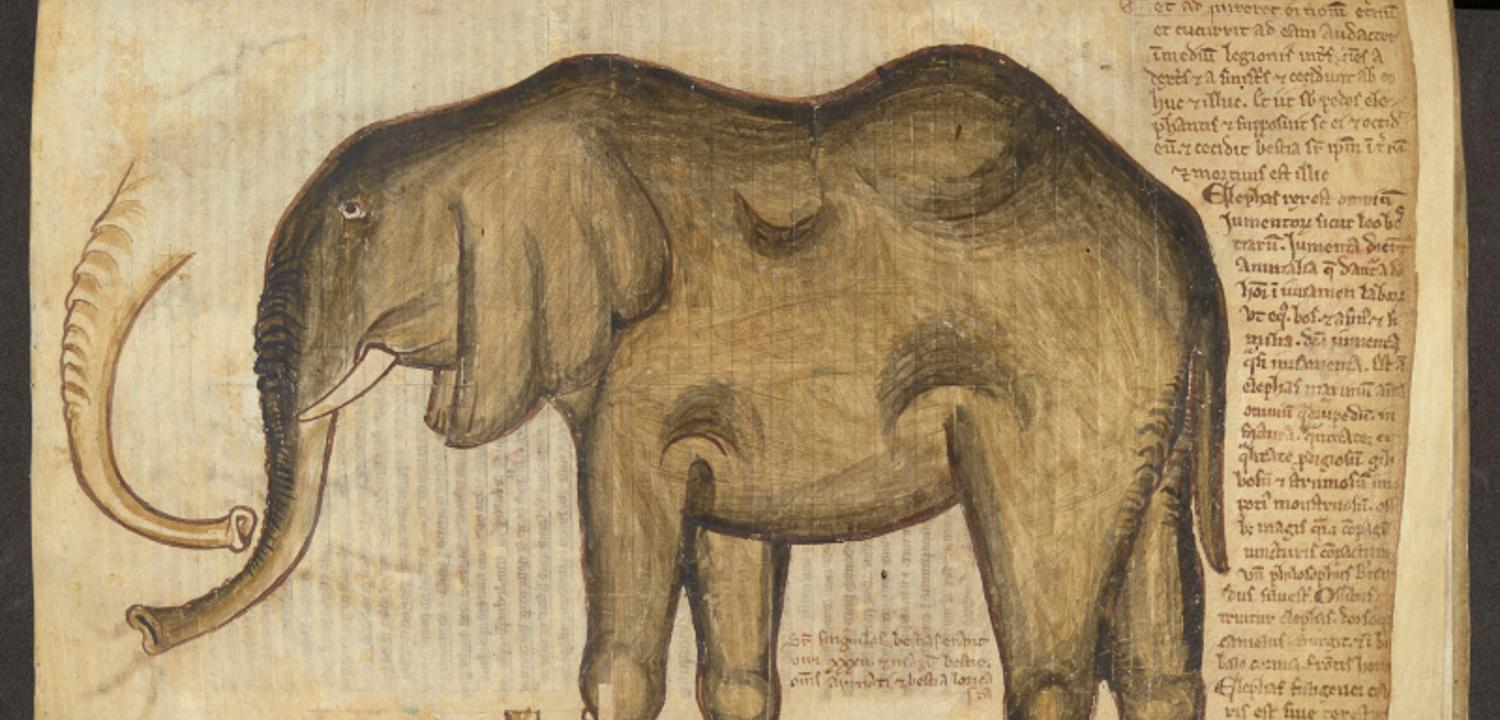Elephant from Matthew Paris manuscript