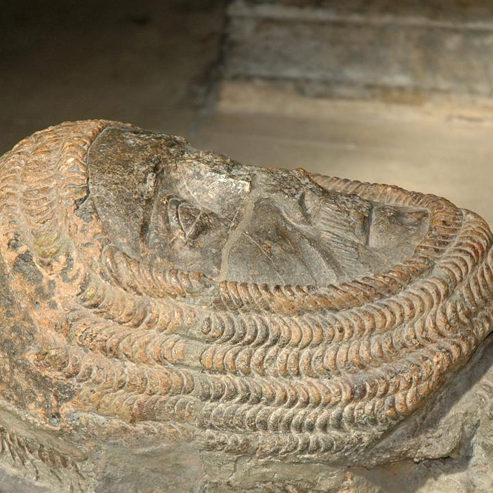 Effigy of William Marshal, Temple Church, London (Kjetilbjørnsrud (CC BY-SA 3.0)