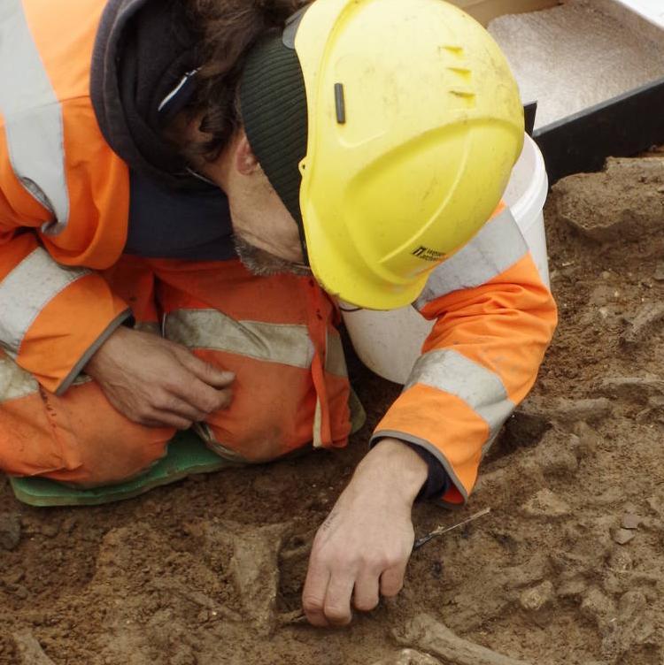 excavating pot and bone debris at the causewayed enclosure