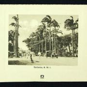 Barbados BWI - BMHS Collection